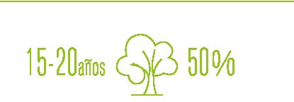 SABES_CUANTO_TARDA_CRECER_BOSQUE_ARBOL_ALGODON_ECOLOGICO_CUIDA_MEDIO_AMBIENTE_cultivo_anual_tala_arboles_madera